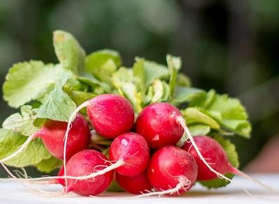 radishes - water