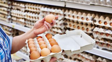 how to choose the best and healthiest eggs