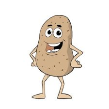 mr. healthy potato