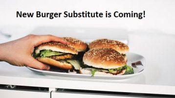All New Plant-Based Veggie Burger