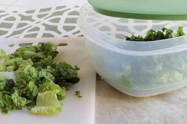 Keeping Lettuce Fresher Longer by Proper Storage