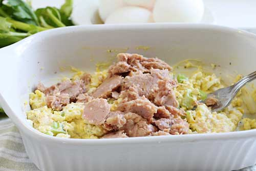 Best Tuna Fish Salad Recipe with Egg and Celery
