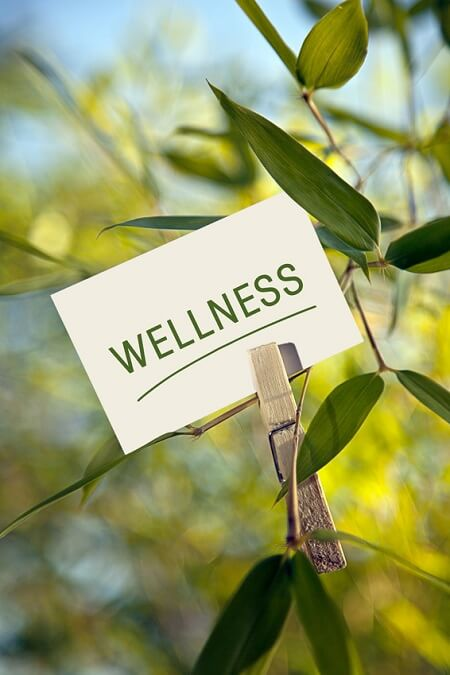 Wellness and 5 Ways to Improve Your Health -