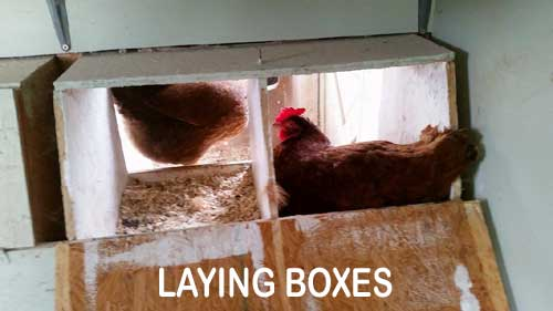 layingboxes