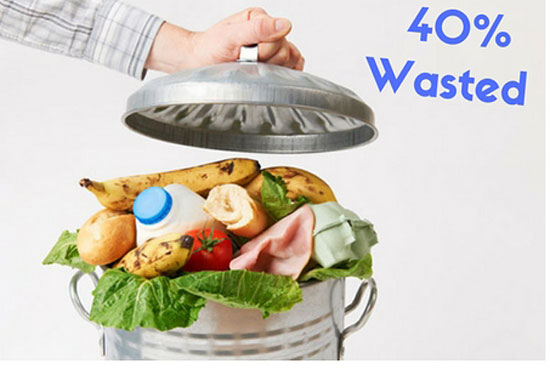 How To Waste Less Food in the Home