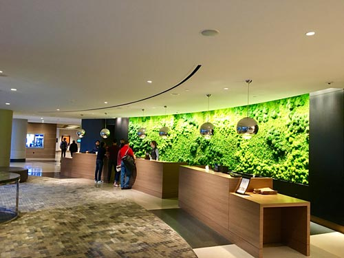 The green wall is a green moss wall behind the front check-in desk.