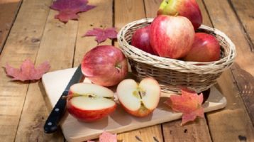 Autumn Fruits and Autumn Vegetables