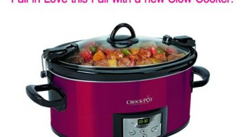 What is the Best Slow Cooker for My Family