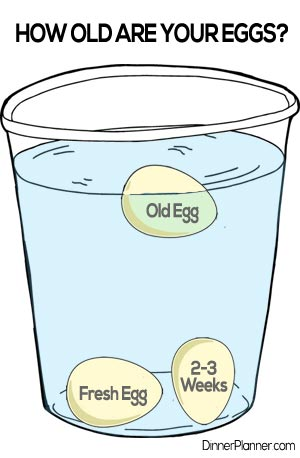 Learn how to tell if eggs have gone bad or are stale