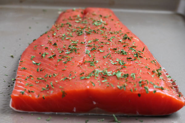 fresh salmon on a tray