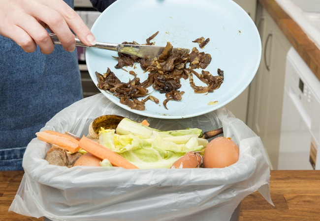 wasted food in the garbage