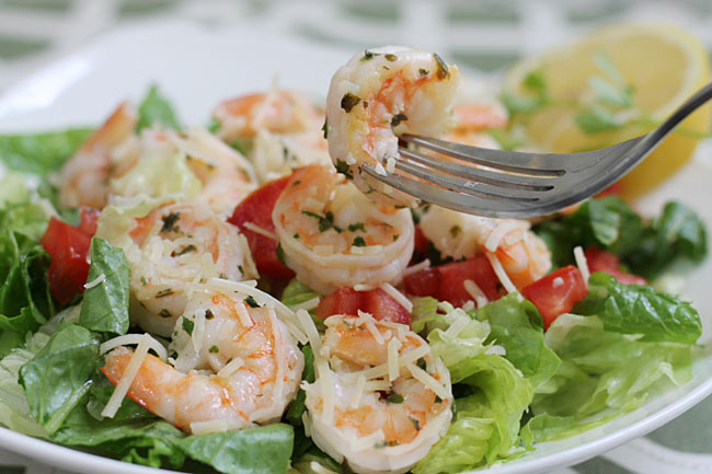shrimp scampi salad